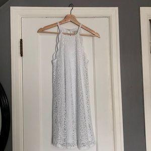 white lacey/scalloped francescas dress